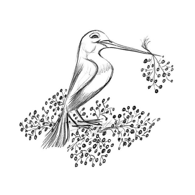 A little bird inspired by @Lorraineloots post today! . . . . .⠀⠀⠀⠀⠀⠀⠀ #lorrainealvarezposen  #visdev  #instaart #characterdesign #sketchoftheday #sketchbook #sketch  #drawingoftheday #lorraineloots #birdsketch