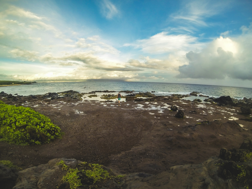 One of the many overlooks on the road to hana right outside of Paia.