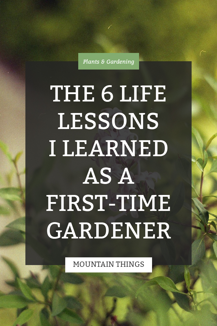 6 Life Lessons Gardening