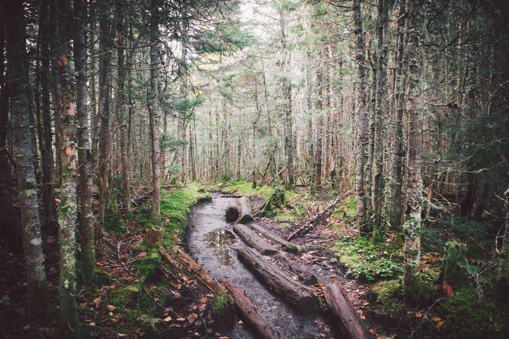 Adirondacks-2018-web-2-10-Mount-Marcy.jpg