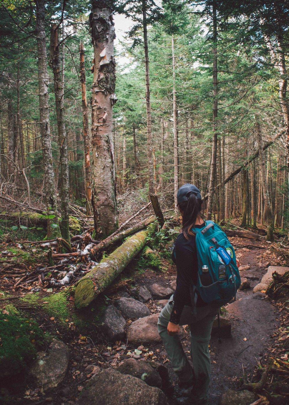 Adirondacks-2018-web-171-Mount-Marcy.jpg