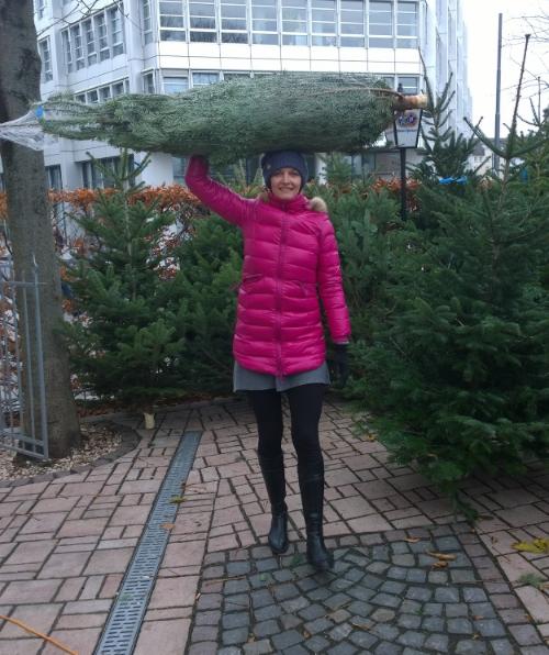 Das Foto hat freundlicherweise der Verkäufer des Christbaumverkaufes an der Hackerbrücke, München aufgenommen und mir einen seiner Bäume dazu leihweise zur Verfügung gestellt. Meinen Baum hatte ich am Vortag woanders gekauft - aber vor Aufregung nicht daran gedacht, ein Foto zu machen.