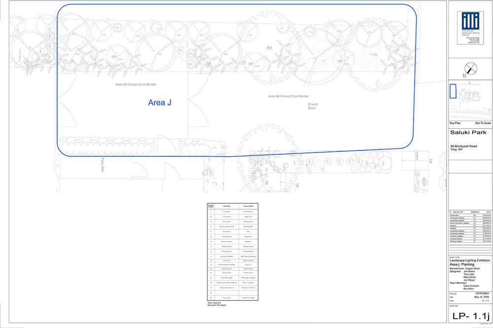 Area J_Landscape.jpg