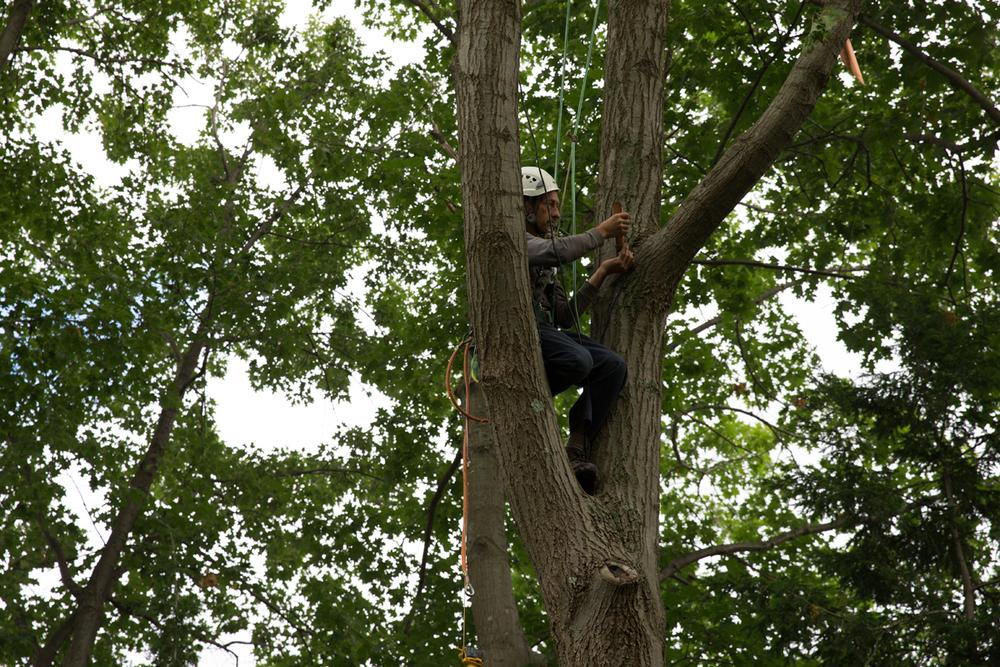 Climber in Area E