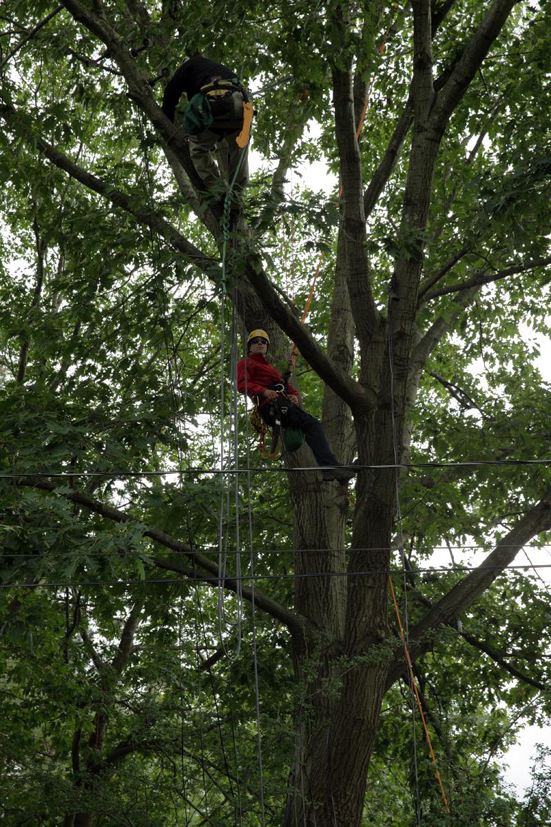 Climber in Area C