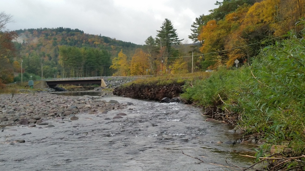 Habitat Restoration Demonstration Project at County Bridge 157, W. Branch Neversink