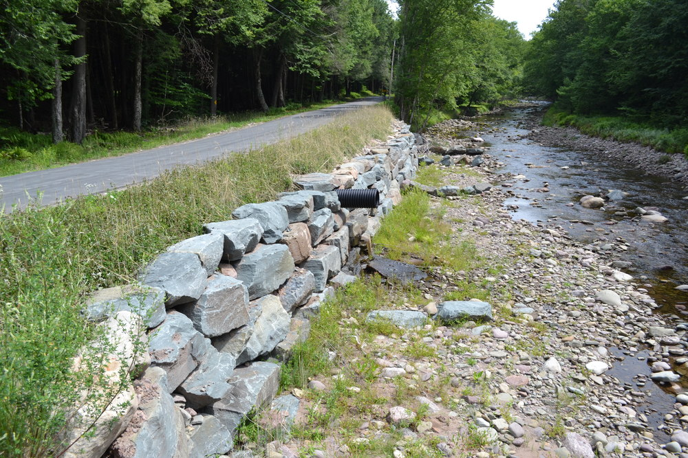 Streambank Stabilization Denning Road and New Road Hill Bridge E.Branch Neversink (SMIP/CSBI)