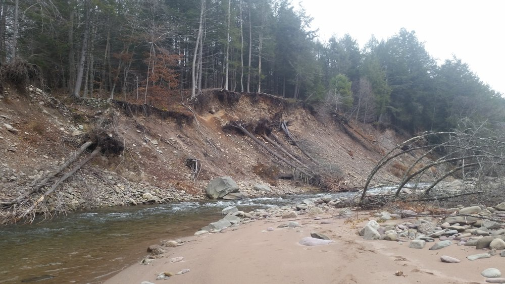 E. Branch Neversink River at Blue Hill Lodge Slope Stabilization Design