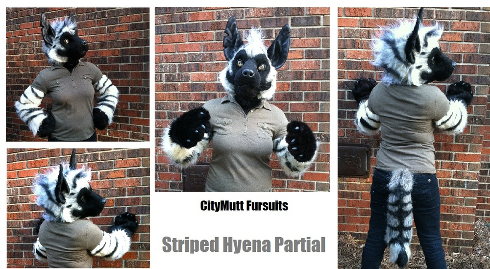 Striped Hyena Partial Gallery Sheet.jpg