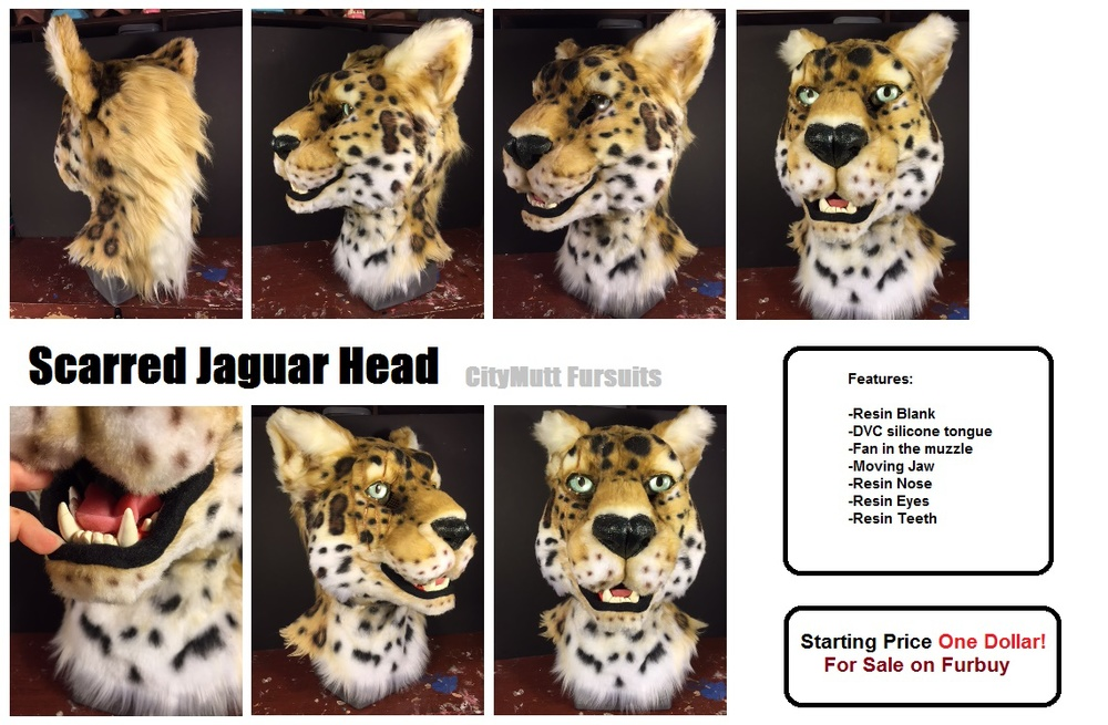 Jaguar Gallery Sheet.jpg