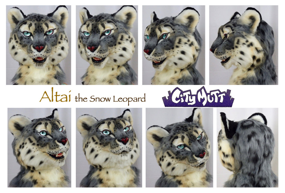 Altai Gallery Sheet.jpg