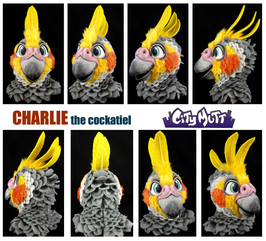 Charlie Gallery Sheet.jpg