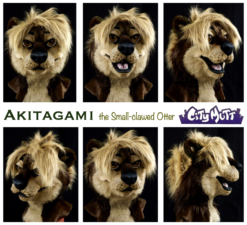 Akitagami Gallery Sheet.jpg