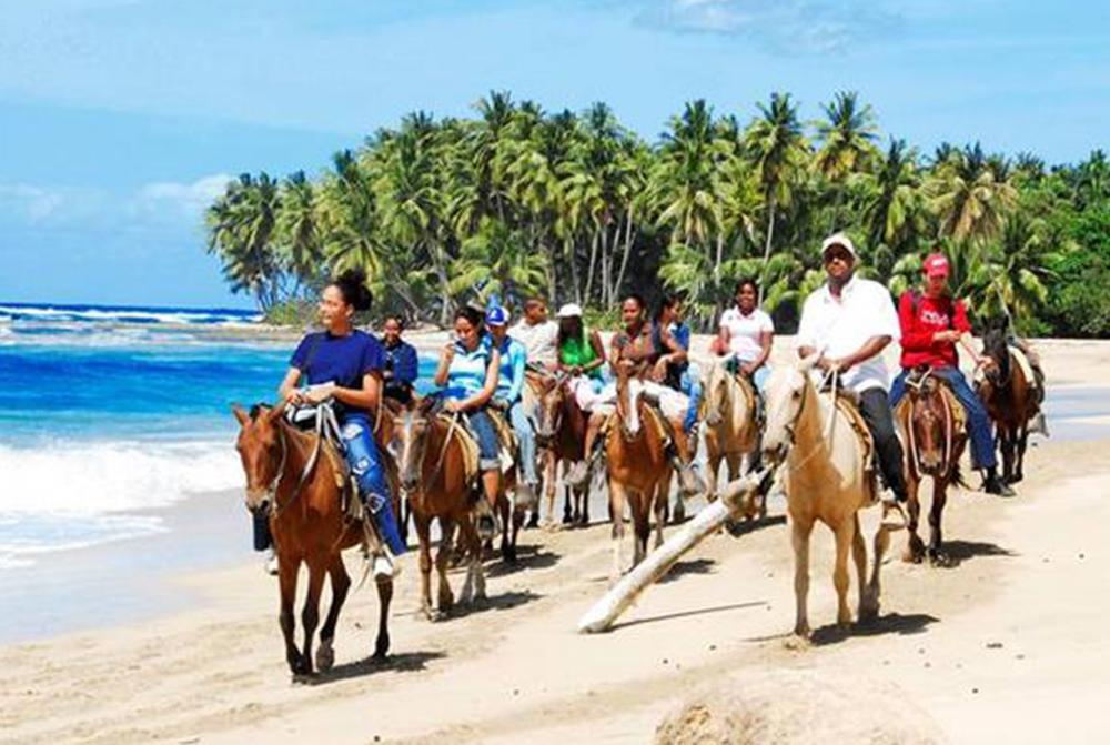 wisdom_0000_horseback riding adventure.jpg