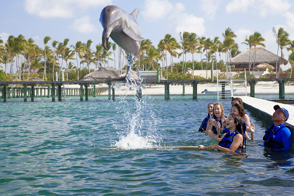 wisdom_0001_dolphin explorer punta cana 14.jpg