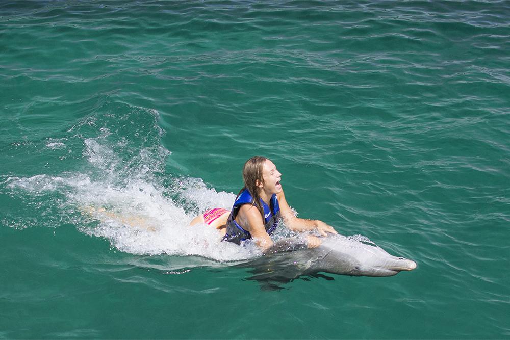 wisdom_0006_dolphin experience punta cana9.jpg