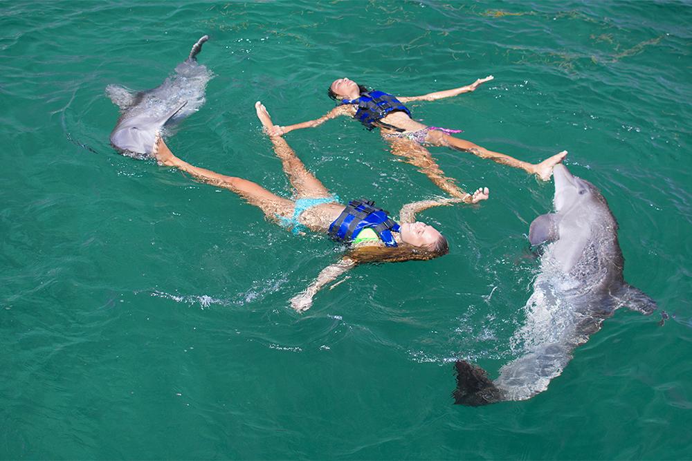 wisdom_0007_dolphin experience punta cana8.jpg