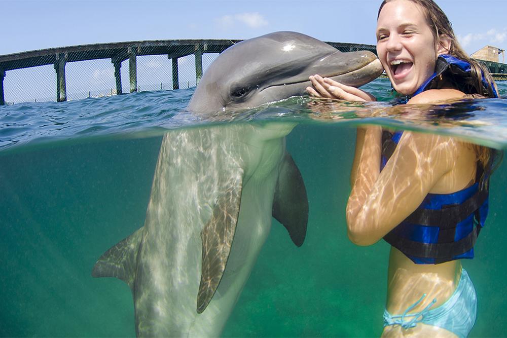 wisdom_0009_dolphin experience punta cana6.jpg