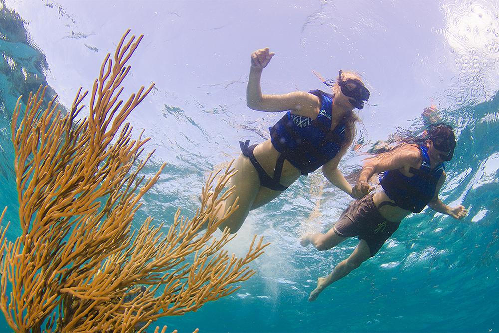 wisdom_0008_dolphin experience punta cana7.jpg
