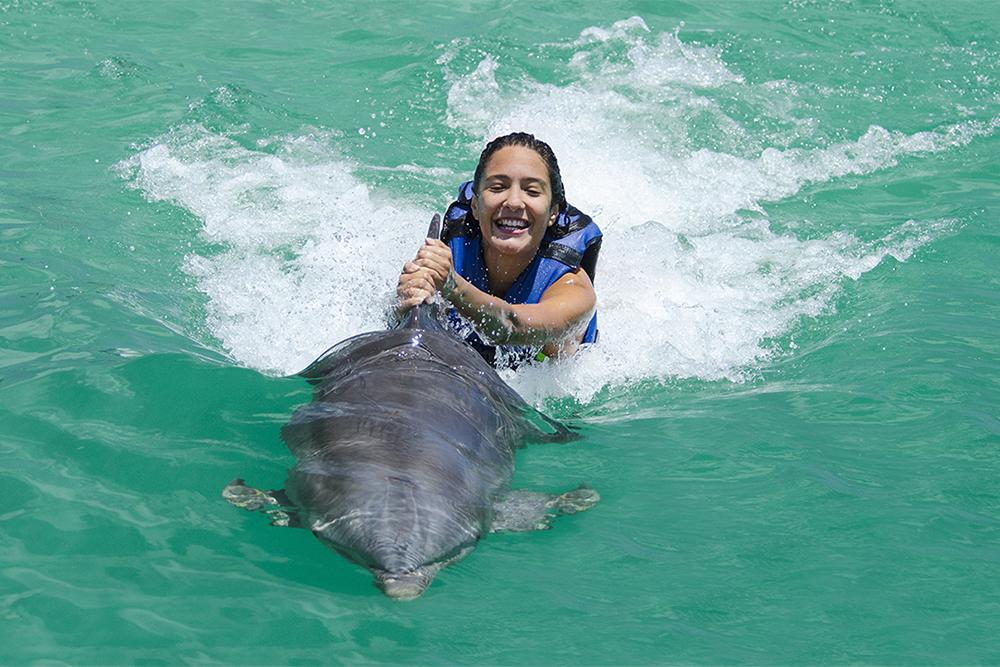 wisdom_0012_dolphin experience punta cana 3.jpg