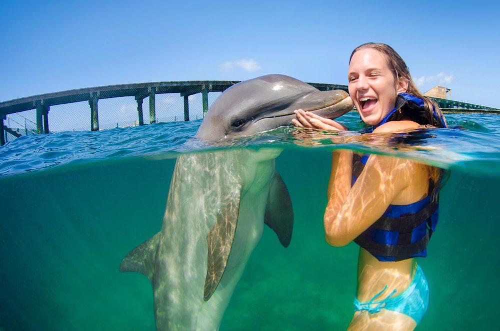 dolphin_experience_in_punta_cana.jpg