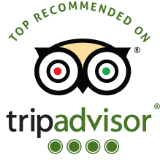 Wisom Travel • TripAdvisor Reviews