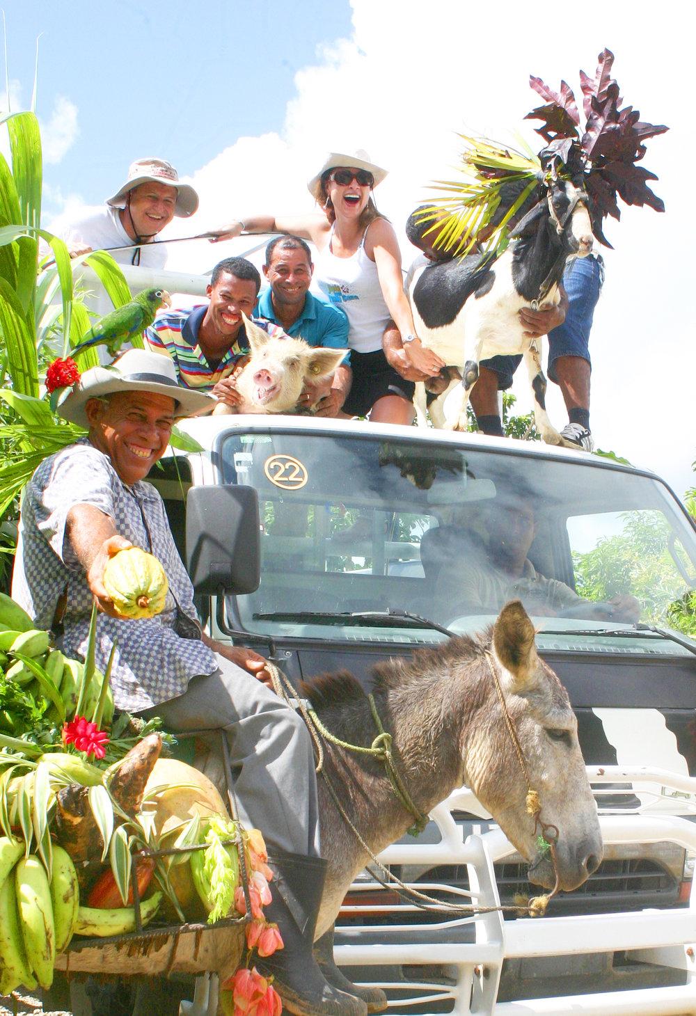 Bavaro Runners farm animals DR.jpg