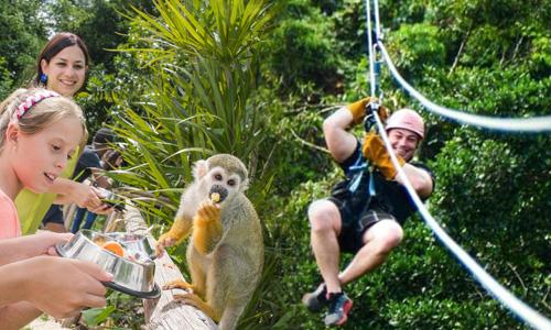 monkey_zipline.jpg
