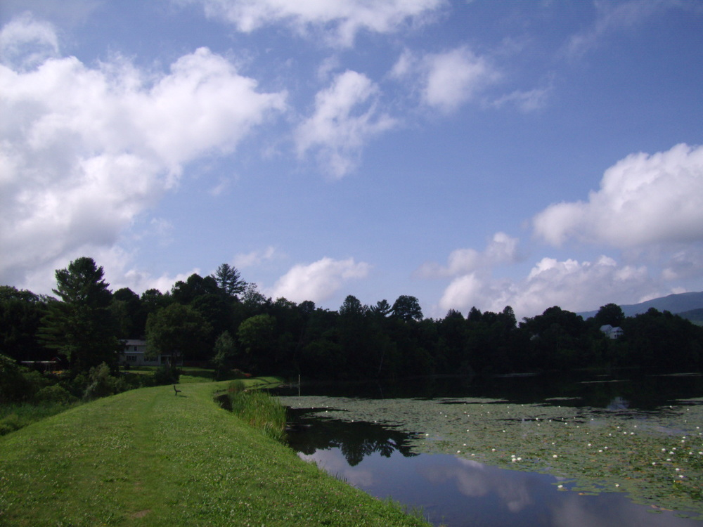 runnemede+dam+in+paradise+park.jpg