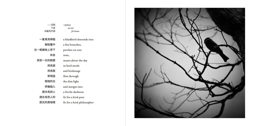 AFertileDarkness-Pages-015-1200.jpg