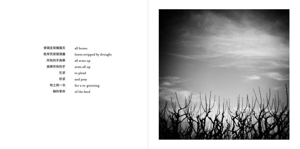 AFertileDarkness-Pages-029-1200.jpg