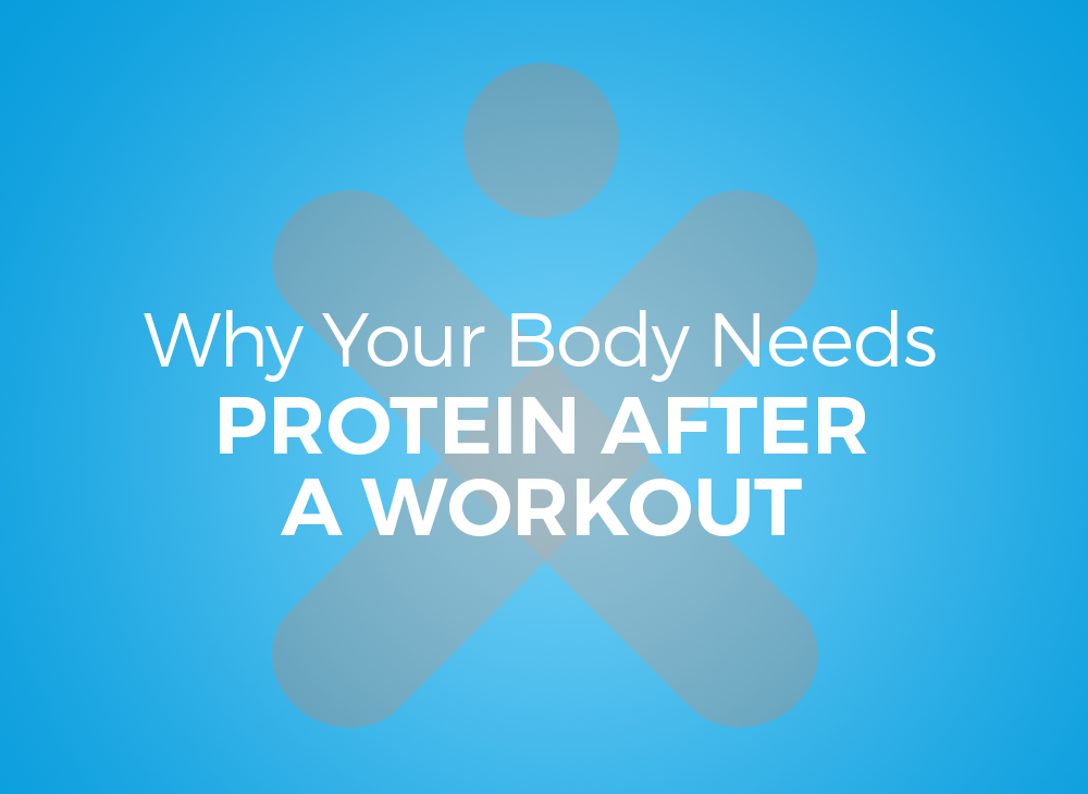 Why Your Body Needs Protein