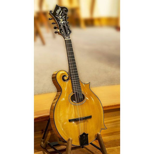 "A rare and beautiful 2001 Stephen Gilchrist 4C mandolin. The ""C"" stands for Classical. This was found at Dusty Strings in Seattle. #mandolin #themandolinplayer #classicalmusic #f4mandolin #seattle #americanamusic"