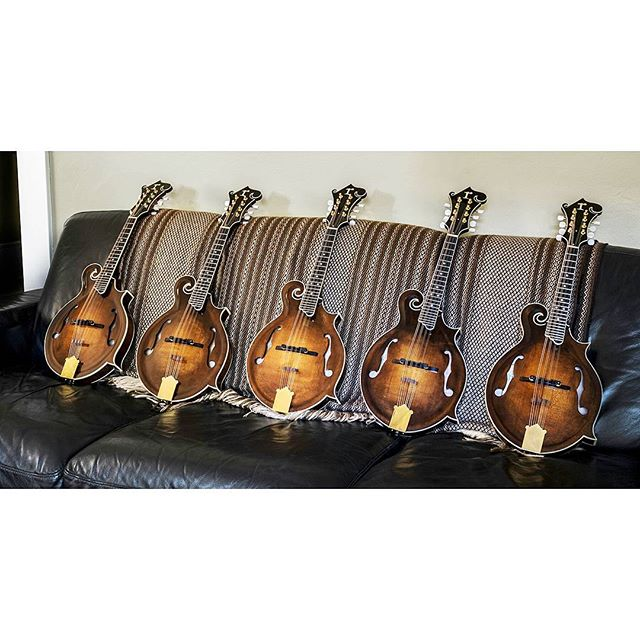 This is Matt Ruhland's latest batch of mandolins. Matt is a new builder in Portland, Oregon, and has completed 11 mandolins. They are all banjo-killing, bluegrass machines with a fine sound! There is a blog post about Matt and his mandolins at: themandolinplayer.net  #mandolin #themandolinplayer #handmadeinstruments #bluegrassmusic #portland #oregon