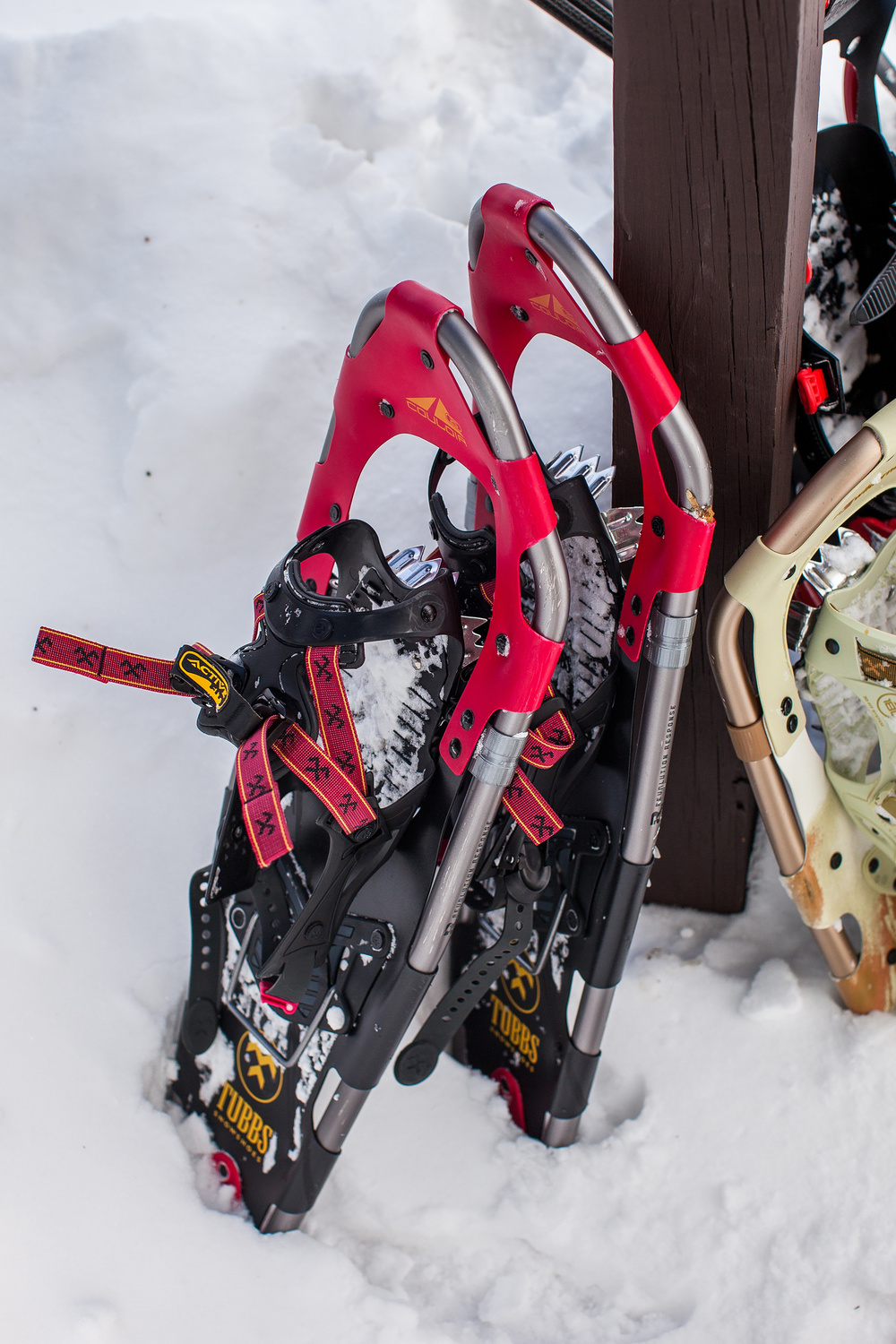 CindyGiovagnoli_Maine_Photographer_Winter_Mountains_Snow_Ski_Snowshoe-030.jpg