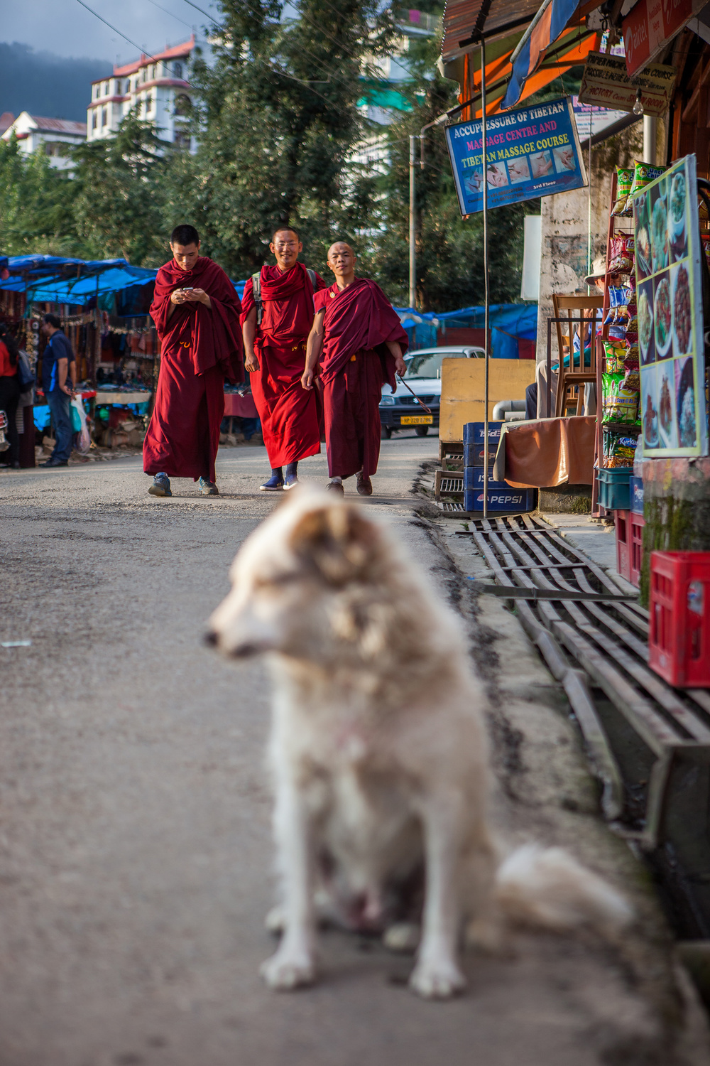 CindyGiovagnoli_India_McCleodganj_travel_photographer_DalaiLama-048.jpg