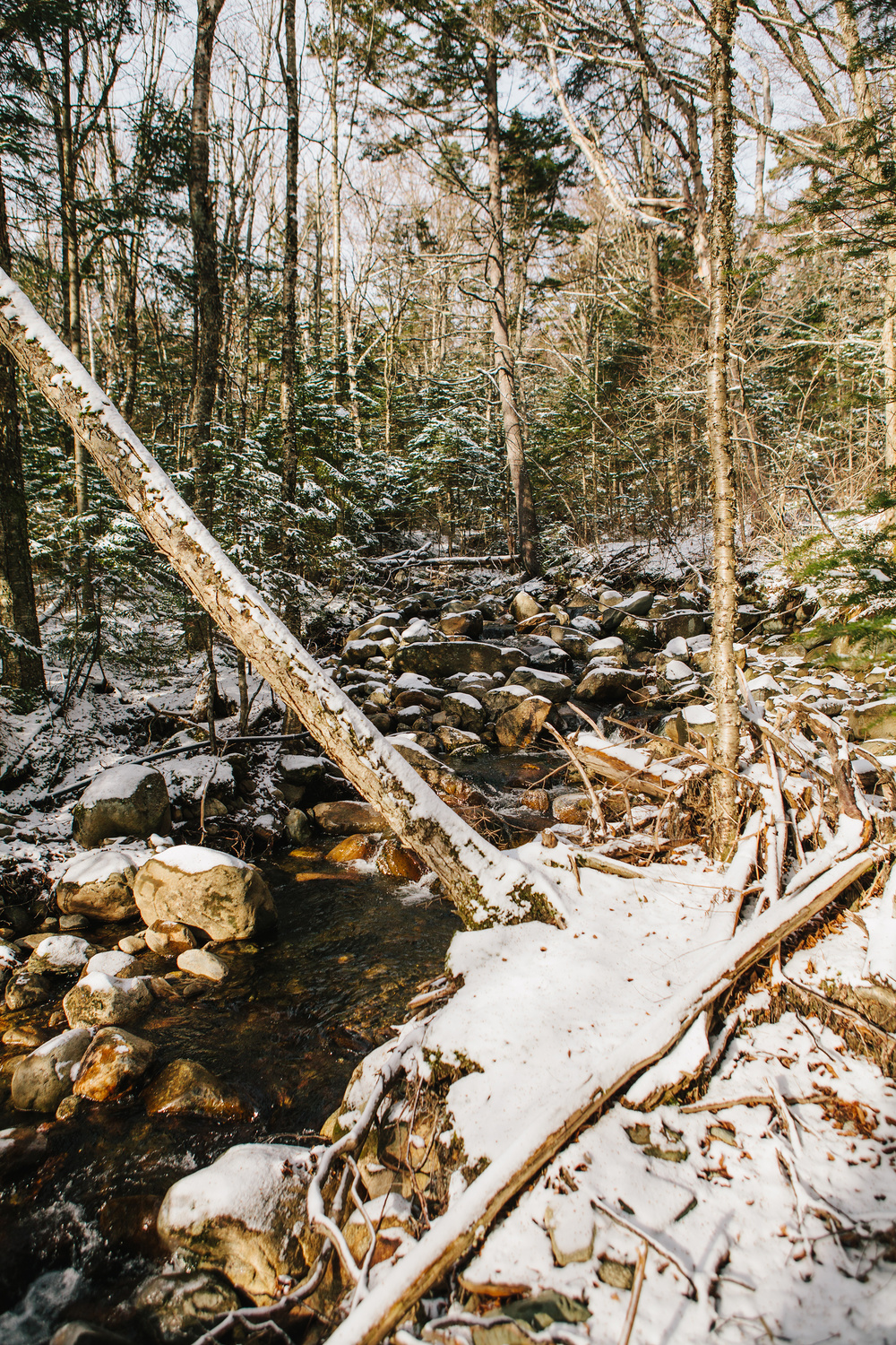 Maine_NewEngland_photographer_WhiteMountains_Moosilauke_snow_mountains_hike-033.jpg