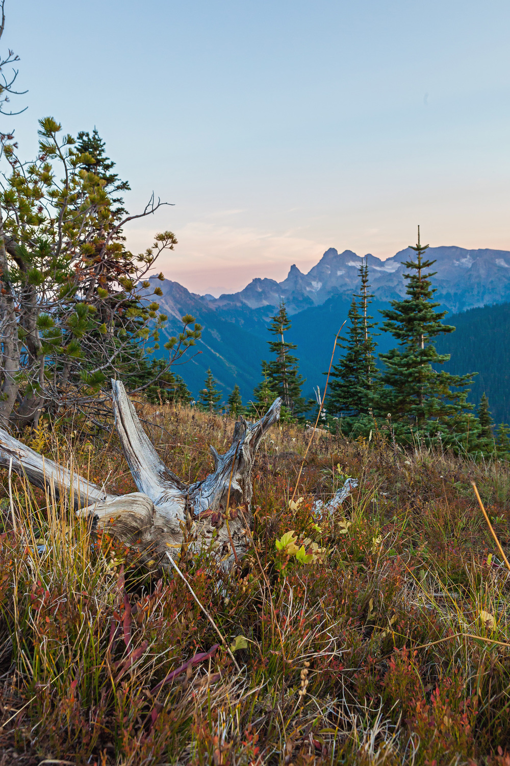 CindyGiovagnoli_MountRainier_Olympic_NationalPark_HohRainforest_Washington_MRNP_Camping-019.jpg