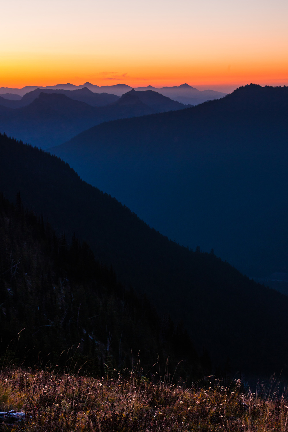 CindyGiovagnoli_MountRainier_Olympic_NationalPark_HohRainforest_Washington_MRNP_Camping-030.jpg