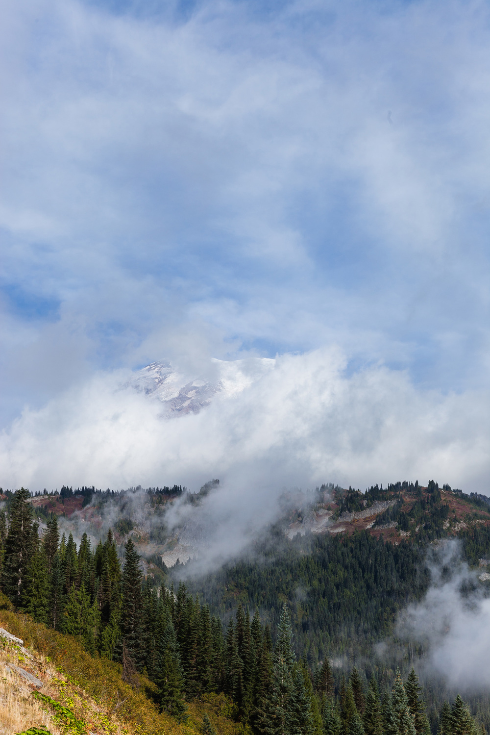 CindyGiovagnoli_MountRainier_Olympic_NationalPark_HohRainforest_Washington_MRNP_Camping-067.jpg