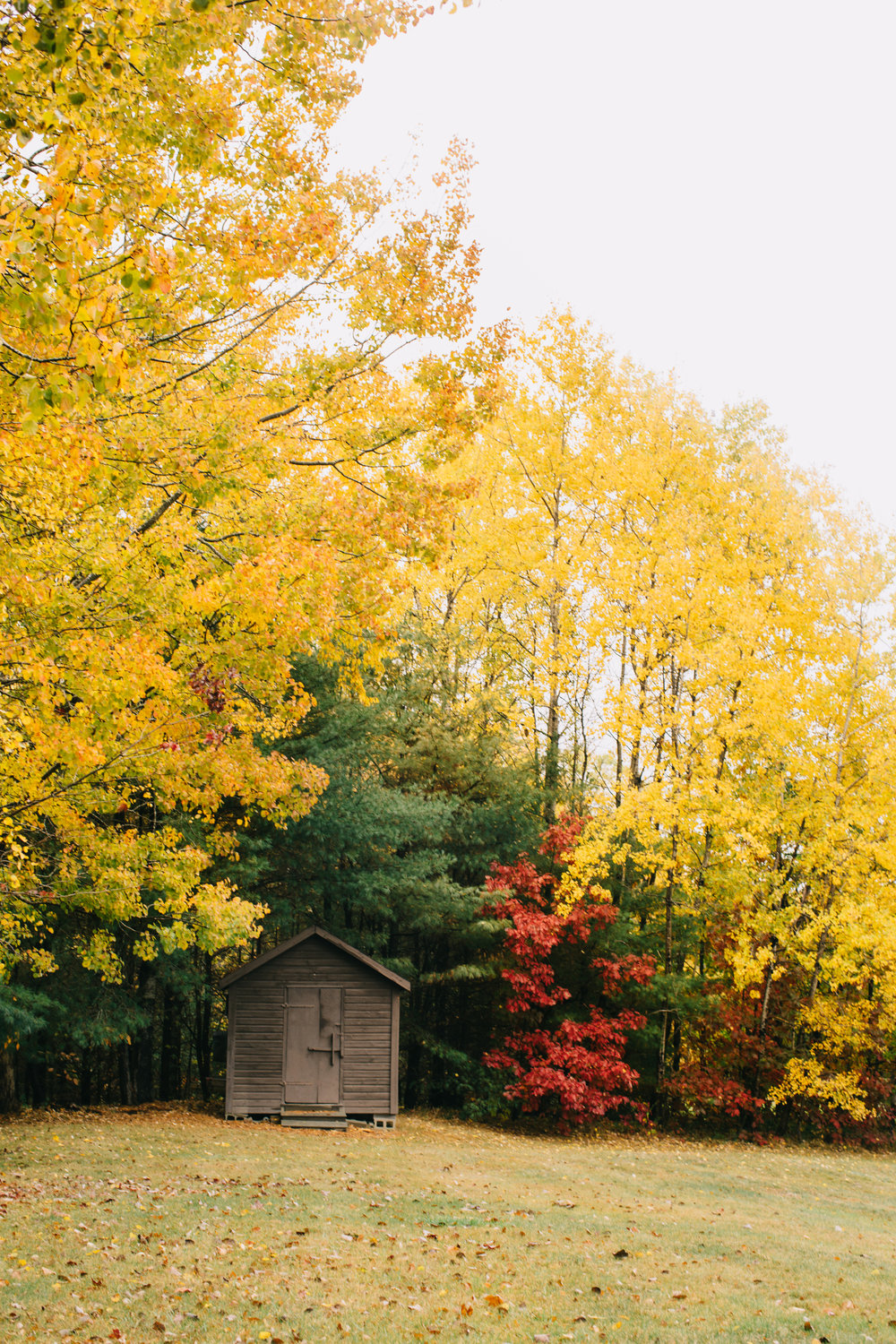 CindyGiovagnoli_Wiscasset_Maine_farm_vanlife_fall_autumn-022.jpg