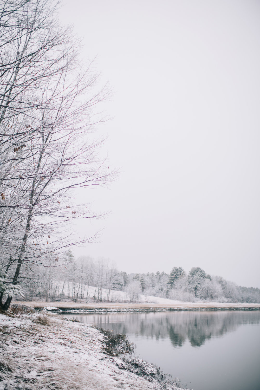 CindyGiovagnoli_Maine_Snow_home-024.jpg