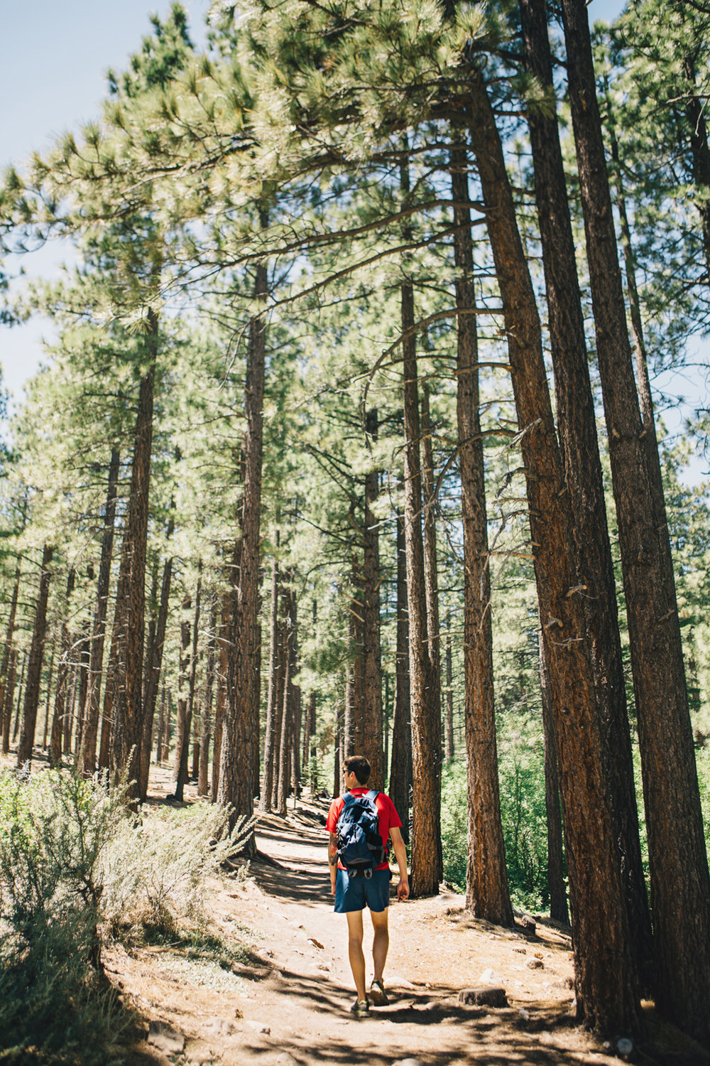 CindyGiovagnoli_Galena_Creek_Visitors_Center_hike_Reno_Tahoe_Nevada_outdoor_activities-003.jpg