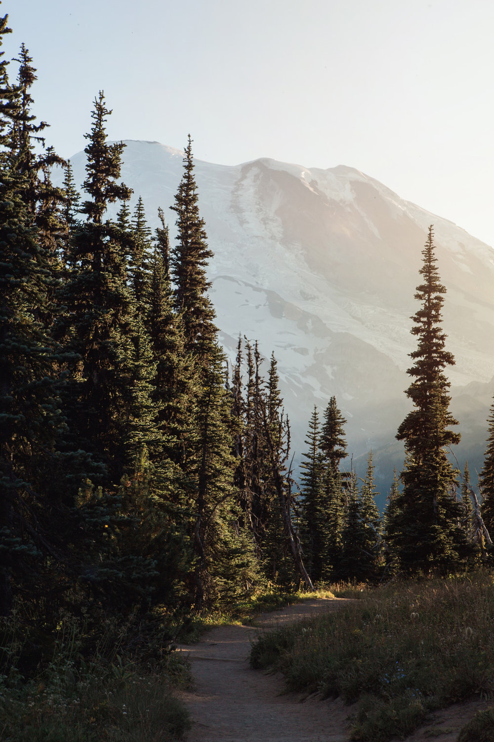 CindyGiovagnoli_Redwoods_CraterLake_MountRainier_PNW_National_Park_trees_camp_road_trip-007.jpg