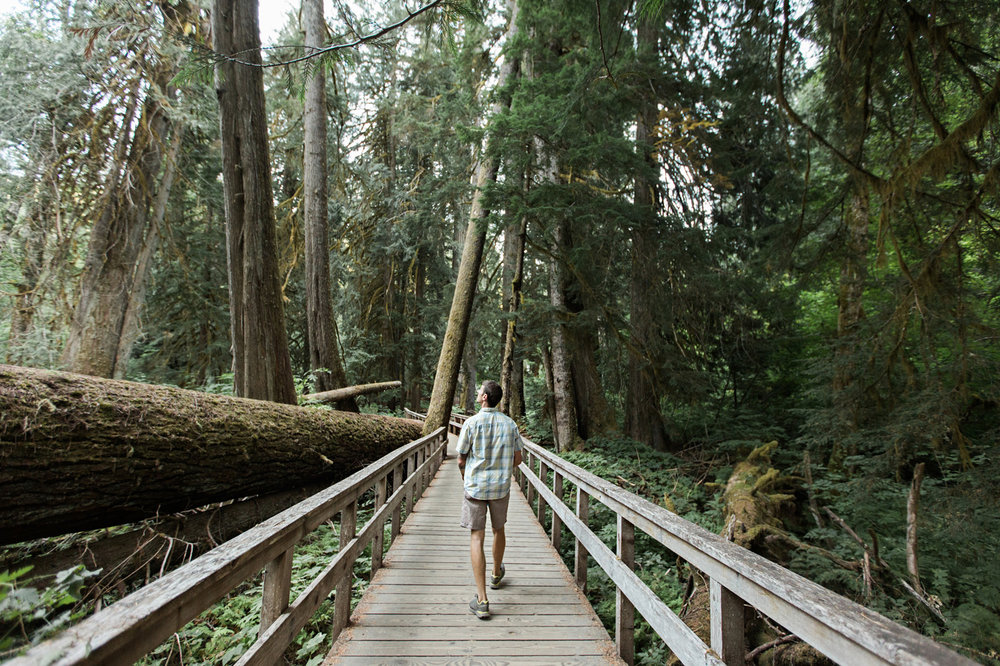 CindyGiovagnoli_Redwoods_CraterLake_MountRainier_PNW_National_Park_trees_camp_road_trip-011.jpg