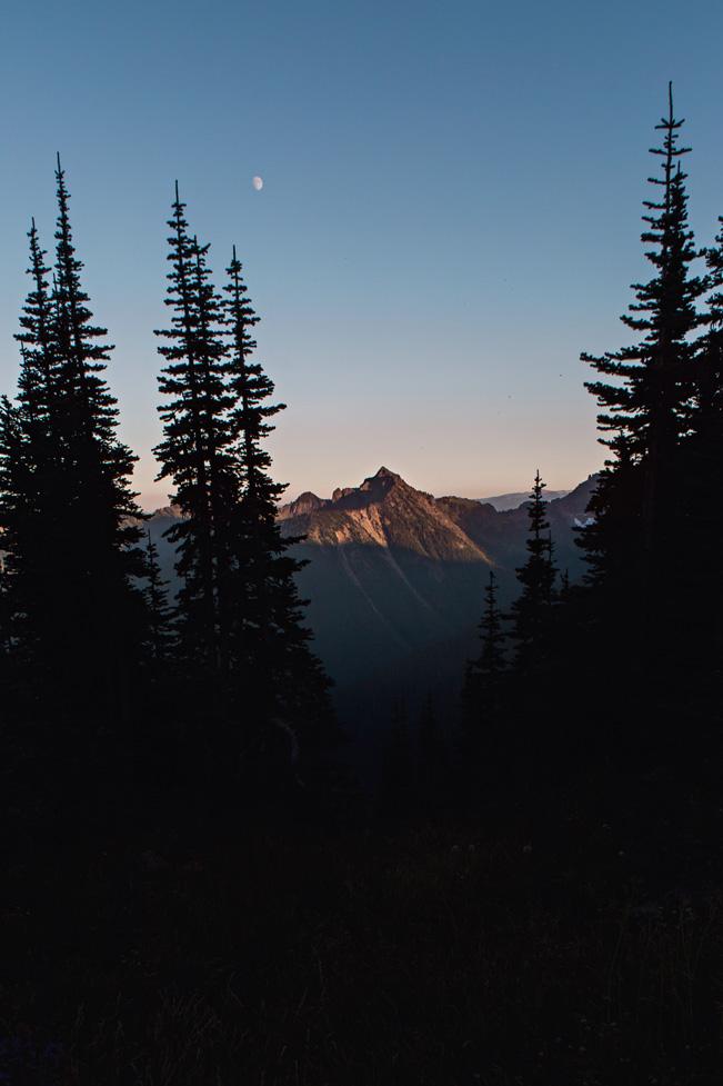 CindyGiovagnoli_Mount_Rainier_National_Park_Washington-010.jpg