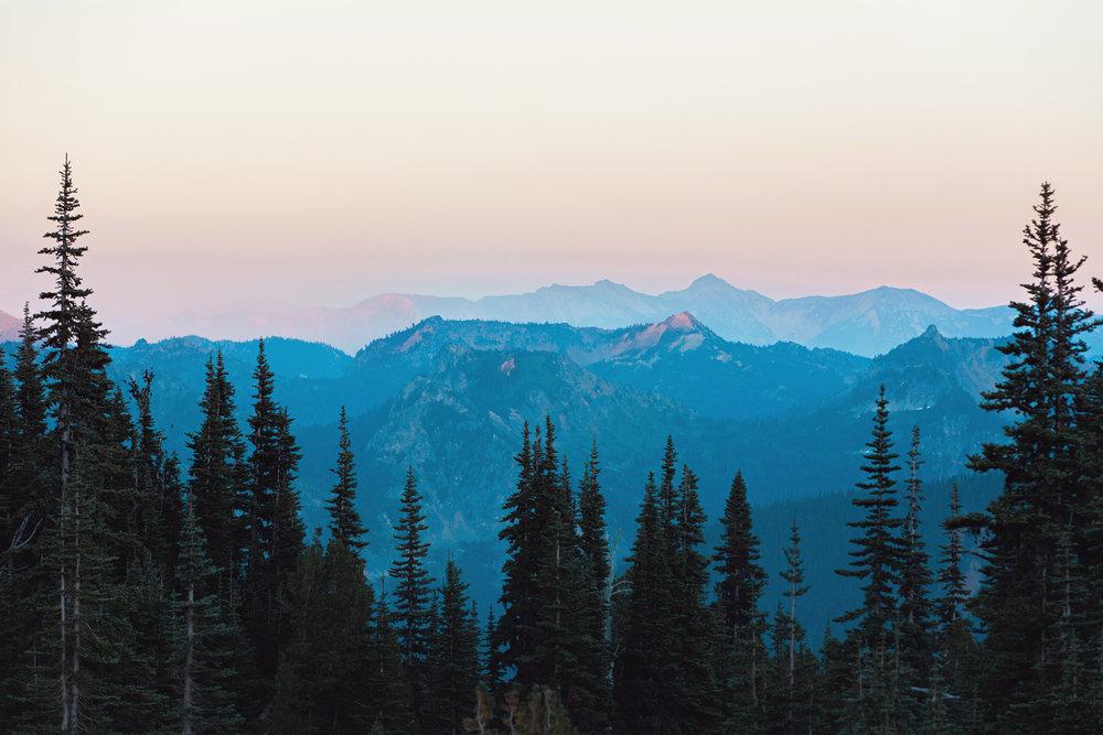 CindyGiovagnoli_Mount_Rainier_National_Park_Washington-016.jpg