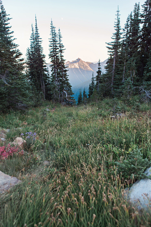CindyGiovagnoli_Mount_Rainier_National_Park_Washington-023.jpg