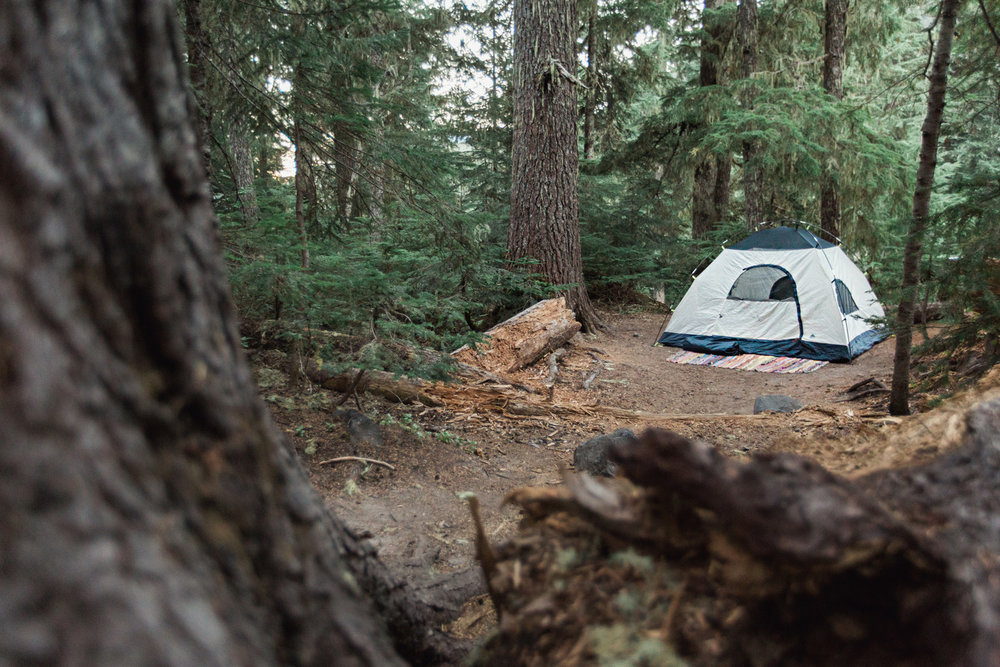 CindyGiovagnoli_Mount_Rainier_National_Park_Washington-029.jpg