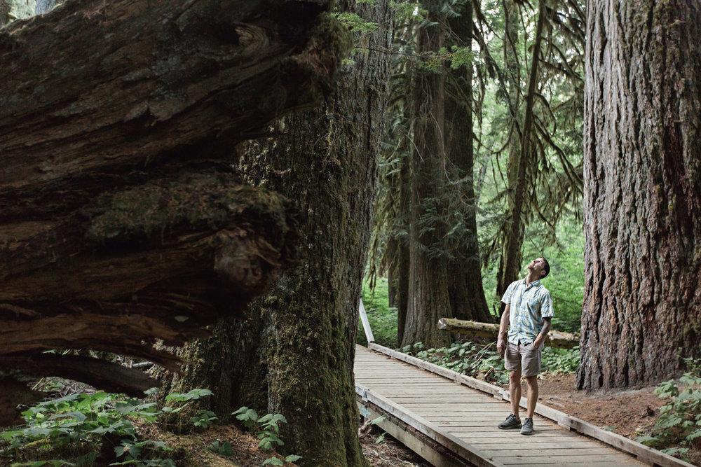 CindyGiovagnoli_Mount_Rainier_National_Park_Washington-032.jpg